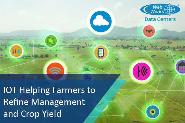 IoT Helping Farmers to Refine Management and Crop Yield
